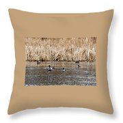 Shoveler Landing Throw Pillow