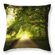 Show Me The Way Throw Pillow