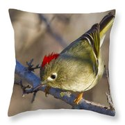 Show-off Throw Pillow