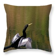 Show Off Throw Pillow by Sean Green