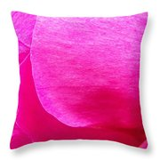 Showing Off The Pink Throw Pillow