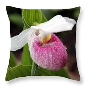 Showy Lady's Slipper Throw Pillow