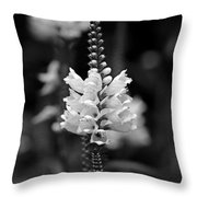 Obedient Plant In Black And White Throw Pillow