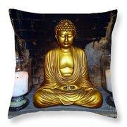 Shrine Of Peace Throw Pillow