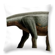 Shunosaurus, A Genus Of Sauropod Throw Pillow