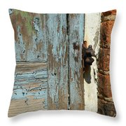 Shuttered Throw Pillow