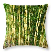 Shweeash Bamboo 2 Throw Pillow