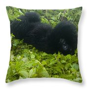 Shy Baby Throw Pillow