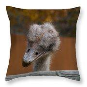 Shy Bird Throw Pillow