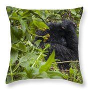 Shy Gorilla Throw Pillow