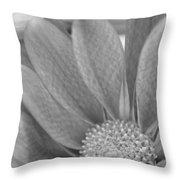 Shy Grey Throw Pillow