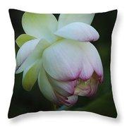 Shy Lotus Throw Pillow