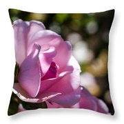 Shy Pink Rose Bud Throw Pillow