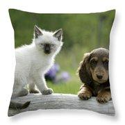 Siamese Kitten And Dachshund Puppy Throw Pillow
