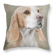 Beagle Portrait Throw Pillow