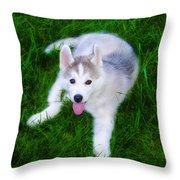 Siberian Huskie Throw Pillow
