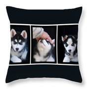 Siberian Husky Puppies Mans Best Friend Throw Pillow