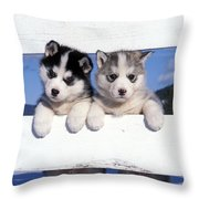 Siberian Husky Puppies Throw Pillow