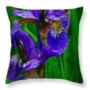 Siberian Iris Throw Pillow