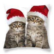 Siberian Kittens In Hats Throw Pillow
