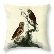Siberian Owl And Acadian Owl Throw Pillow