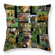 Siberian Tiger Collage Throw Pillow