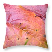 Side By Side They Fall Throw Pillow