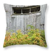 Side Of Barn In Fall Throw Pillow