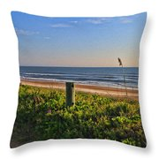 Side Of The Road In Flagler Throw Pillow