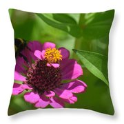 Side-saddled Bee Throw Pillow