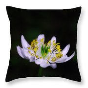 Side View Of A Tiny Paradise Throw Pillow