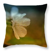 Side View Of An Apple Blossom Throw Pillow