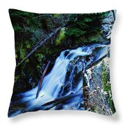Side View Of Bumping Creek Falls Throw Pillow