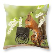 Side View Of Red Squirrel Playing Throw Pillow