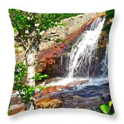 Side View Of Southeast Brook Falls In Gros Morne Np-nl Throw Pillow