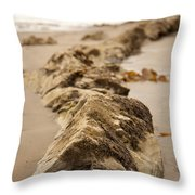 Side Winding Throw Pillow