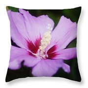 Side Yard Flower 1 Throw Pillow