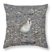 Sidestepping Sandpiper Throw Pillow