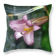 Sideview Of Beauty Throw Pillow
