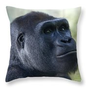Sideways Glance Throw Pillow