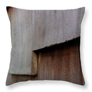 Siding Throw Pillow