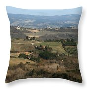 Siena 4 Throw Pillow