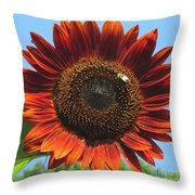 Sienna Sunflower Throw Pillow