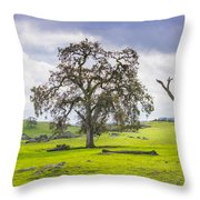 Sierra Foothills And Clouds Throw Pillow