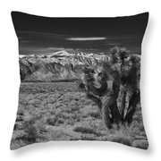 Sierra Nevada Mtns And Joshua Tree Img 0604 Throw Pillow