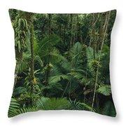 Sierra Palm Trees El Yunque Puerto Rico Throw Pillow