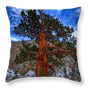 Sierra Pine Throw Pillow