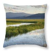 Sierra Valley Wetlands Throw Pillow