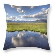 Sierra Valley Wetlands II Throw Pillow
