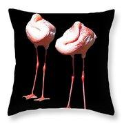 Siesta In Pink Throw Pillow